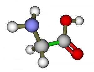 amino rūgštys